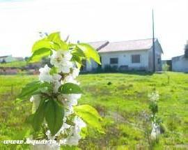 Quartos para alugar em moradia com jardim perto de Rio Maior