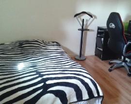 Alugo quarto individual em zona calma e habitacional com TV