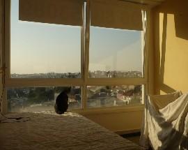 Alugo quarto panoramico perto ITQB e Instituto Gulbenkian