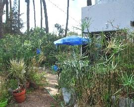 Alugo casa com jardim na Aroeira